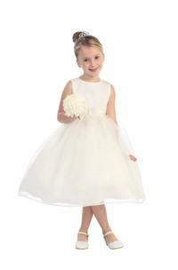 Sleeveless Jewel Neck Tulle Overlay Skirt With Sparkle Bodice